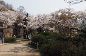 長野公園の遊具