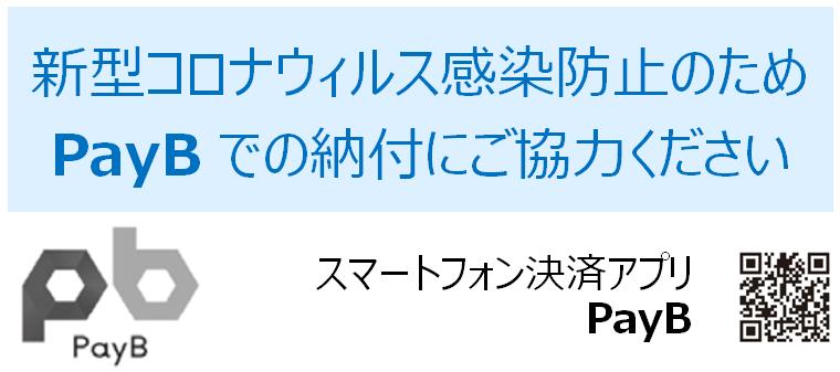 PayB画像